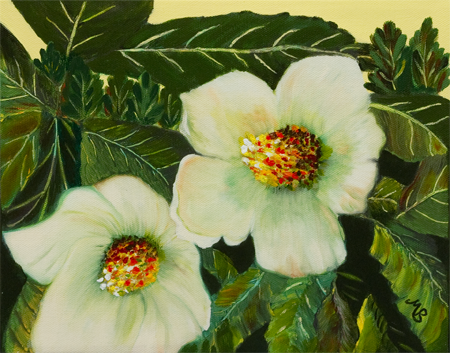 Southern Beauties by artist Mary Berger