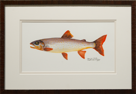 Artic char by artist Ruth Meaders