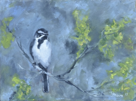 Black-throated Sparrow by artist Tammy Brown