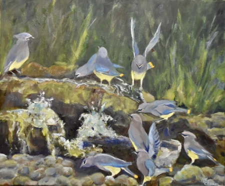 Cedar Waxwings: The Landing by artist Tammy Brown