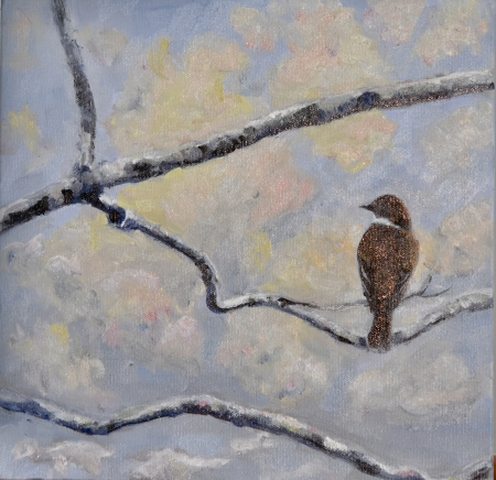 Winter Phoebe by artist Tammy Brown