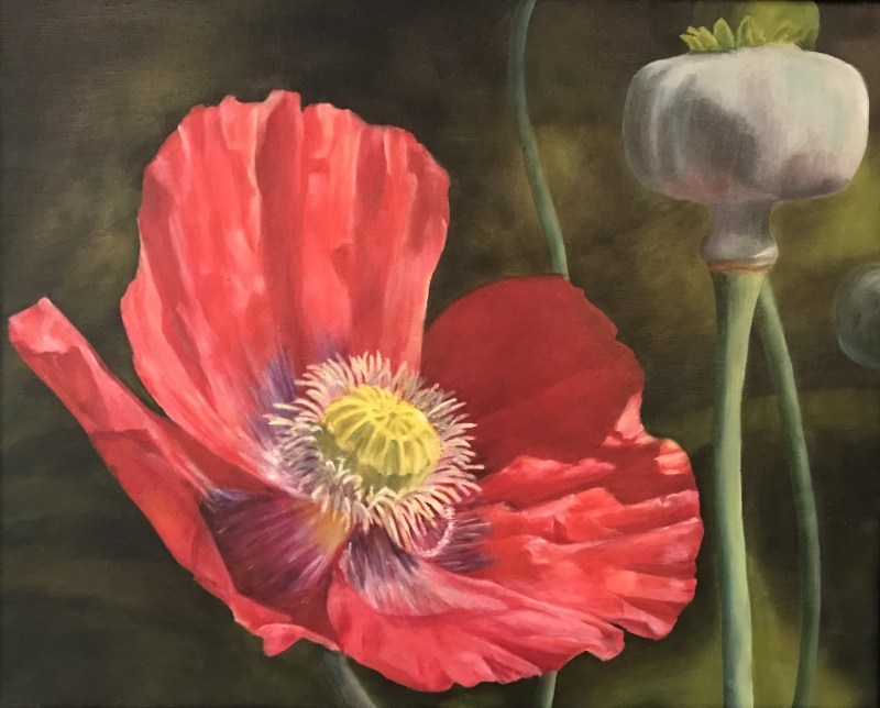 Zilker Poppy by artist Pat Flathouse