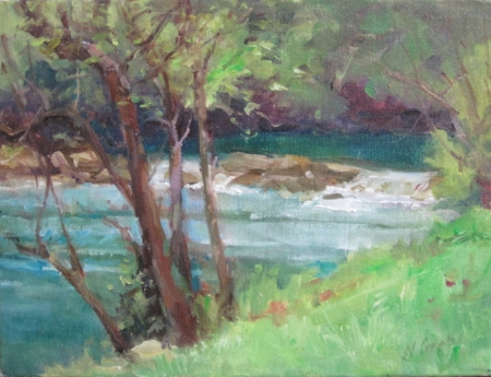 Rushing Water Barton Creek by artist Nancy Grobe