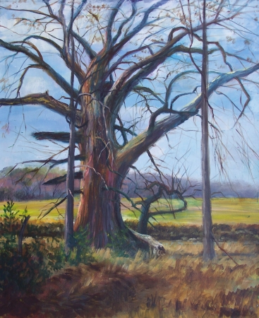 Grandfather Tree by artist Eve Larson