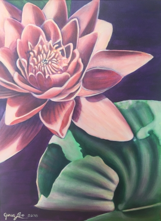 Monocot III: Nymphaea by artist Janus Lee