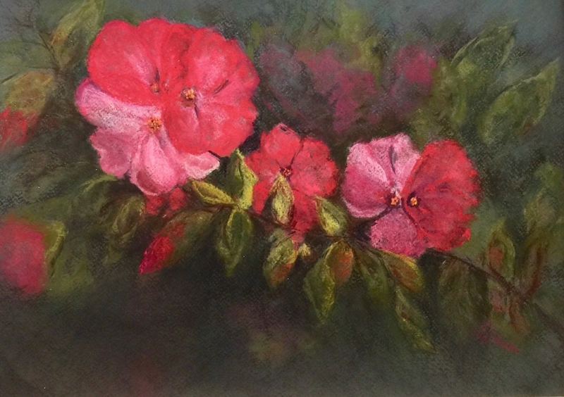 Country House Roses by artist Joycelyn Schedler