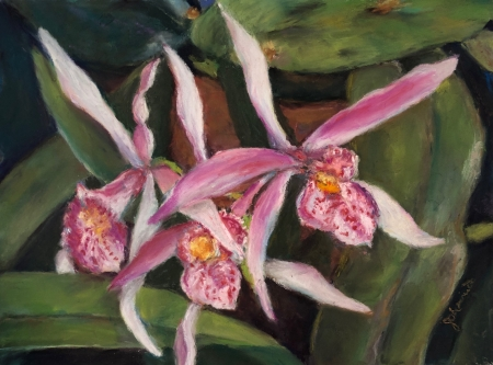 The Grand Opening - Cattleya I by artist Julie Schmidt
