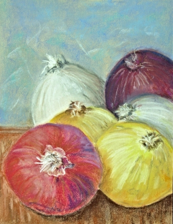Onions by artist Denise Schneyer