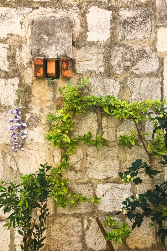A Wall in Dubrovnik by artist Michael Wright